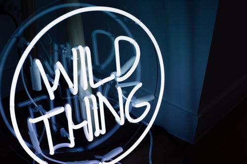 wild-thing-10